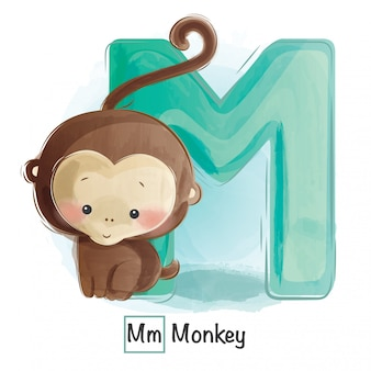 Animal alphabet - m