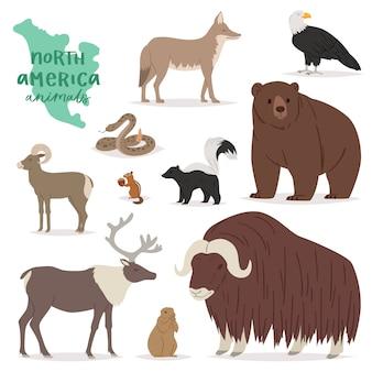 白い背景に分離されたアメリカの捕食者山ヤギのアメリカ野生動物イラストセットで森の動物の動物のキャラクタークマ鹿エルク