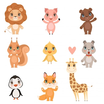 Animal baby cartoon. domestic pig dog and wild lion bear squirrel and giraffe funny cute animals kids  pictures