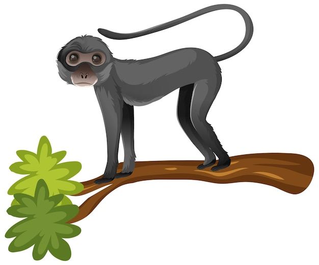 Animal cartoon character of spider monkey on white
