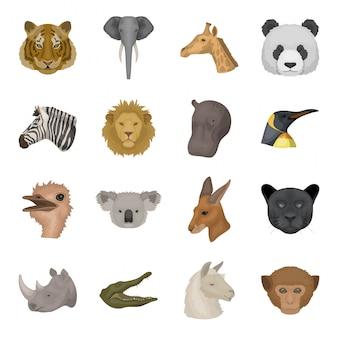 동물 만화 아이콘을 설정합니다. 야생 염소 고립 된 만화 아이콘을 설정합니다. 그림 동물.