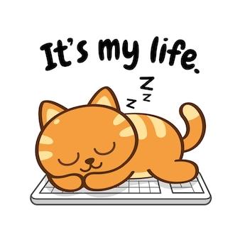 動物キャラクター猫がキーボードで昼寝または睡眠中