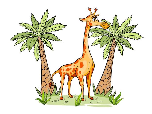 Animal character funny giraffe in cartoon style childrens illustration