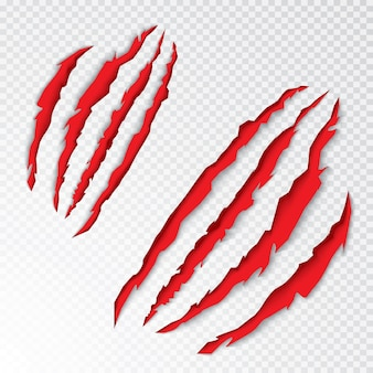 Animal claws scratching. vector illustration. tiger or bear paw scratching on transparent background.
