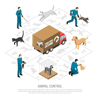 Animal control service isometric