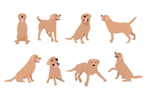 동물 개 래브라도 캐릭터 아이콘은 평면 스타일로 설정되어 있습니다. 디자인 템플릿입니다. eps10 그림입니다.