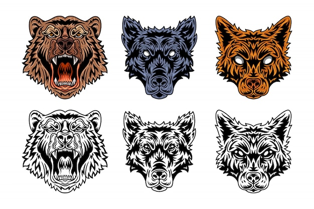 Animal face bear, wolf, fox vintage retro style.
