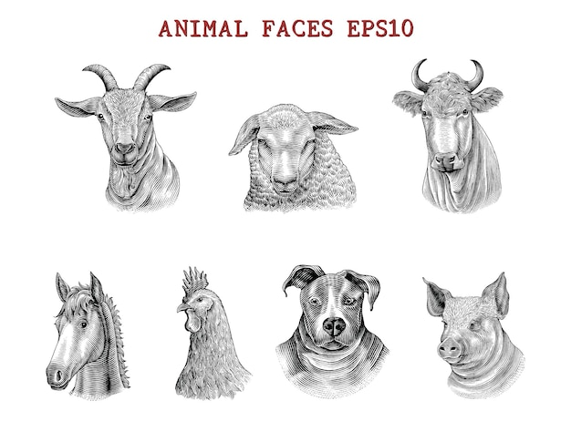 Animal faces hand draw engraving style black and white clip art isolated on white