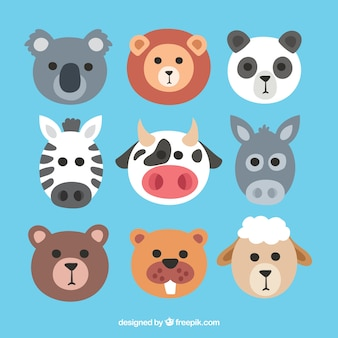 Animal faces set with flat design