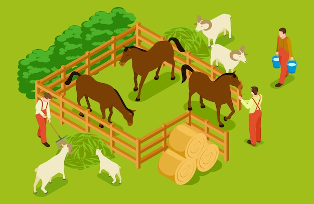 Animal farm, livestock with horses, goats, sheeps and workers isometric  illustration