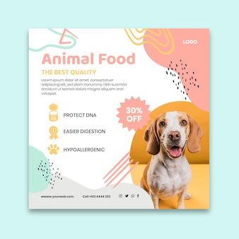 Шаблон флаера в квадрате с кормом для животных