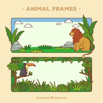Animal frames design
