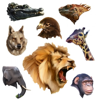 Animal heads, lowoly style icons set