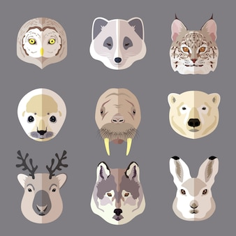 Animal heads set. wolf, polar bear, deer, rabbit, owl, wild cat, seal