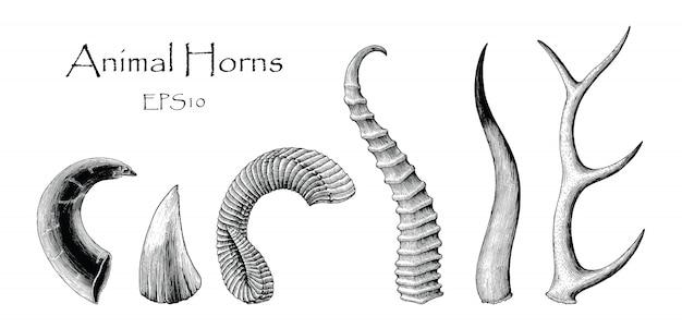 Animal horns set hand drawing vintage engraving illustration