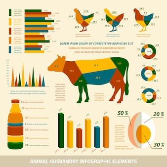 가축 및 닭 벡터 일러스트 레이 션의 축산 인포 그래픽 평면 디자인 요소