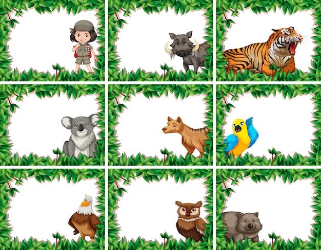 Animal on nature template