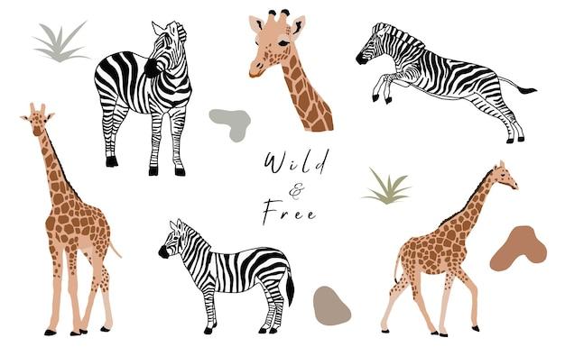 Коллекция объектов животных с жирафом, зеброй. векторная иллюстрация для значка, стикер, для печати