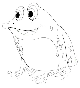カエルの動物の概要