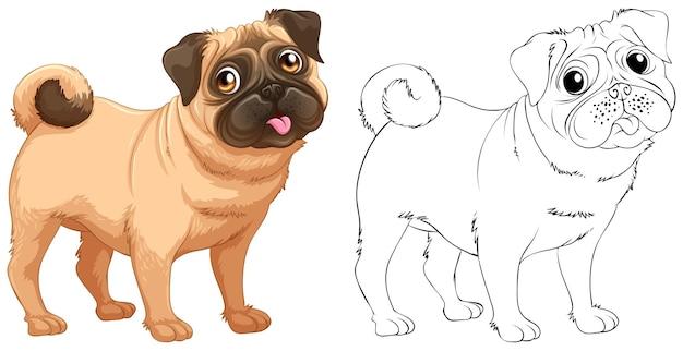 小さなパグ犬の動物の概要