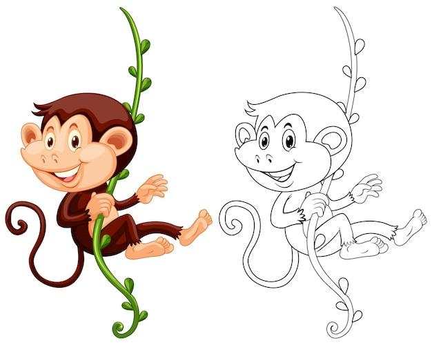 포도 나무에 매달려 원숭이에 대한 동물 개요