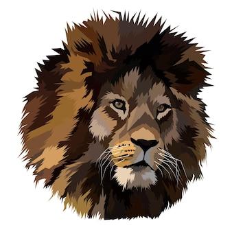 Animal print lion pop art portrait