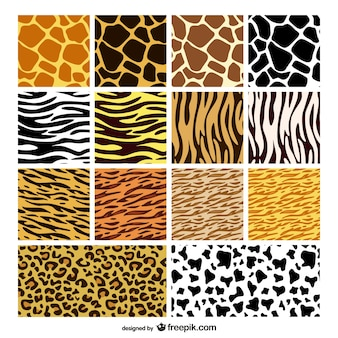 Animal print patterns collection