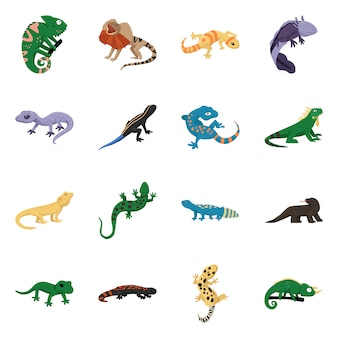 Animal and reptile . collection animal and nature stock symbol .