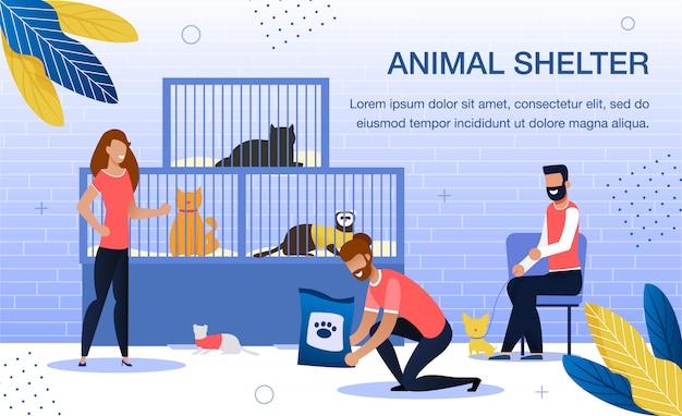 Animal shelter volunteering flat template