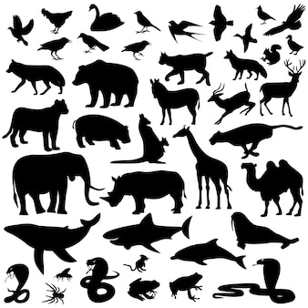 Animal silhouettes collection Premium Vector