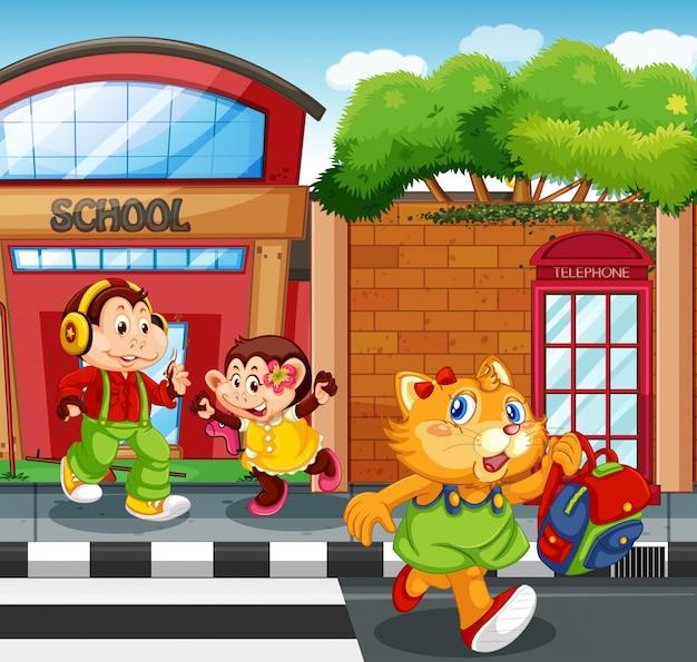 Студент животных перед школой