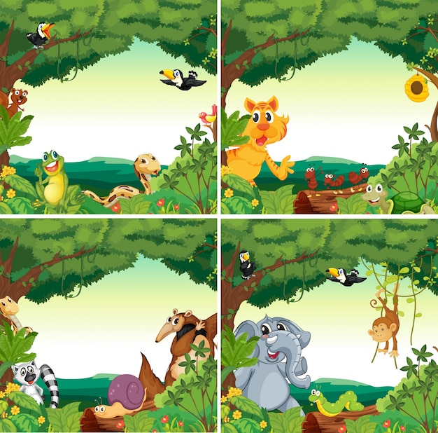 동물과 숲