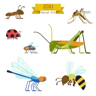 Animals cartoon flat design illustrations set.