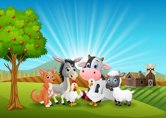 Animals farm relax in the morning