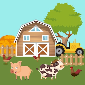 Animals in the farmyard