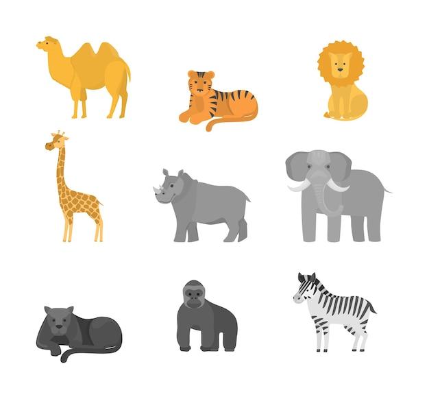 아프리카 동물 세트. 사파리에서 야생 동물의 수집. 코끼리와 기 라피, 호랑이와 사자. 삽화