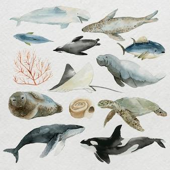수채화 설정 벡터에서 바다에서 동물