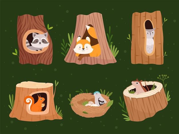 동물은 속이 비어 있습니다. 야생 동물을 위한 구멍이 있는 나무 숲에는 벡터 만화 컬렉션이 있습니다. 야생 동물 너구리와 다람쥐, 새 둥지 집 그림