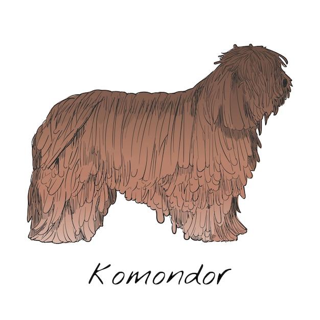 Набор иллюстраций для животных