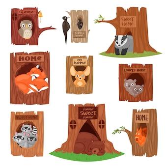 Животные в полых векторных анималистических символов в дереве выдолбленные отверстия иллюстрации набор птиц сова или птица на верхушках деревьев и белка медведь или лиса в полое дерево на белом фоне