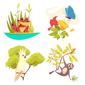 Animals jungle design concept with frog in reeds, butterfly on flower, parrot and sloth  illustration