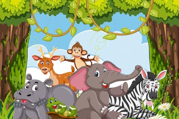 Animals in jungle scene