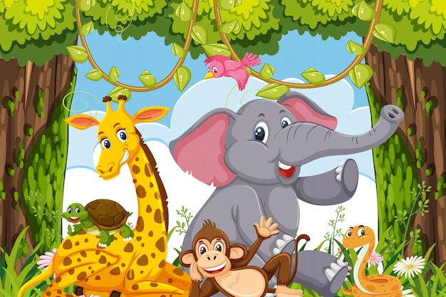 Animals in jungle scene