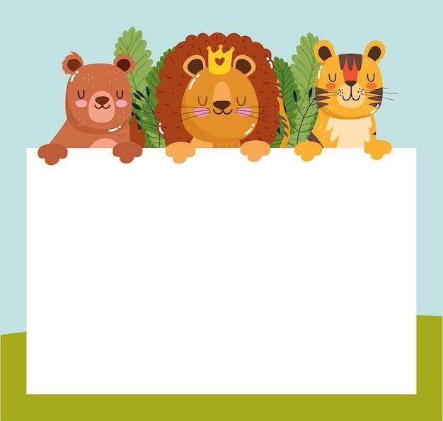 Animals lion tiger bear cartoon