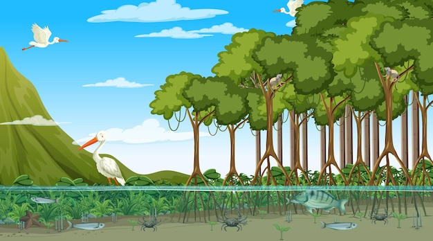 낮 시간에 맹그로브 숲에 사는 동물들