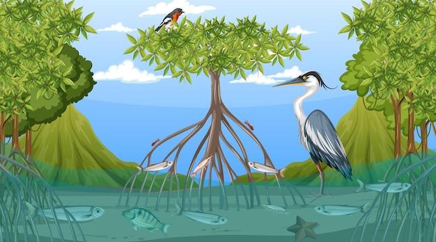 Животные живут в мангровом лесу днем