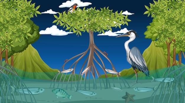 Животные живут в мангровом лесу ночью