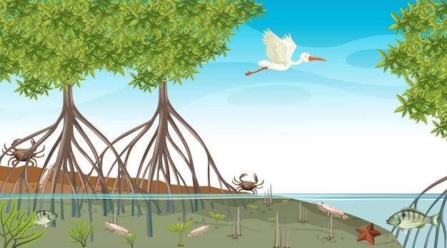 Gli animali vivono nella foresta di mangrovie durante la scena diurna