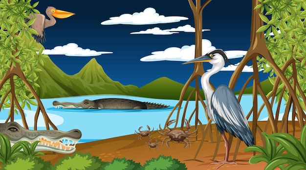 Gli animali vivono nella foresta di mangrovie di notte