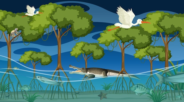 Animals live in mangrove forest at night scene